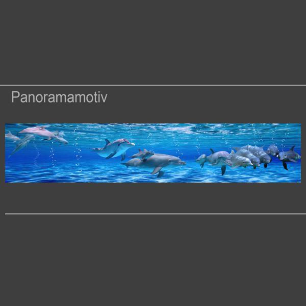 Details about  /Küchenrückwand Spritzschutz aus Glas 120x60 Deko Tiere Drei Delphine