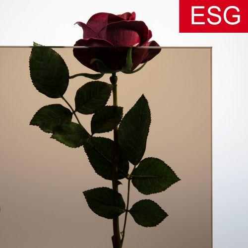 Parsol-Bronze Glas als ESG - Sicherheitsglas  Vorschaubild #2