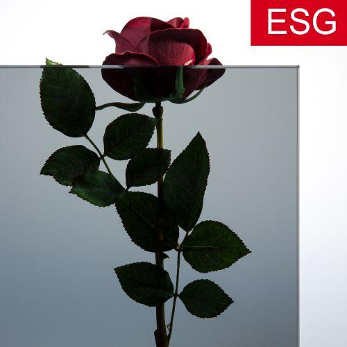 Parsol-Grau Glas als ESG - Sicherheitsglas  Vorschaubild #2
