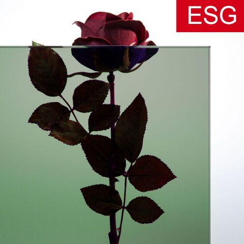 """Parsol-Grün Glas """"PRO green"""" als ESG - Sicherheitsglas  Vorschaubild #2"""