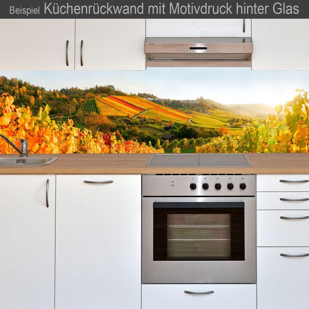 k chenr ckwand aus glas mit motivdruck weinberg online kaufen. Black Bedroom Furniture Sets. Home Design Ideas