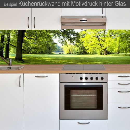 k chenr ckwand aus glas mit motivdruck waldblick online kaufen. Black Bedroom Furniture Sets. Home Design Ideas