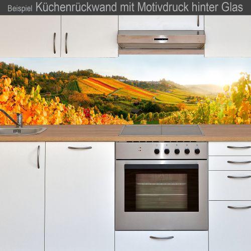 """Küchenrückwand aus Glas mit Motivdruck """"Weinberg""""  Vorschaubild #3"""